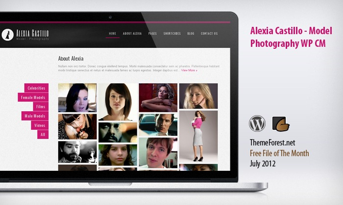 themeforest-free-file-of-the-month-july-2012